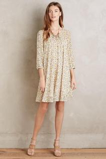 Lizzie Swing Dress - Anthropologie $168